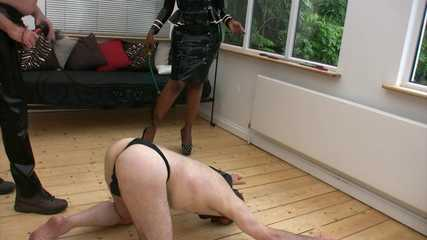 Mistress Ava Black's Whipping - Bend Over Slave (HD wmv)
