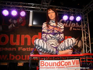 Nongrid_medium_yvette-taming-the-zebra