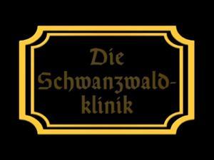 Nongrid_medium_die-schwanzwaldklinik