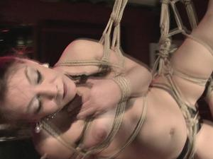 Nongrid_medium_suspension-die-hnge-bondage