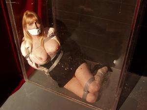 Nongrid_medium_trapped-in-the-cube-secretary-lorelei-is-held-captive