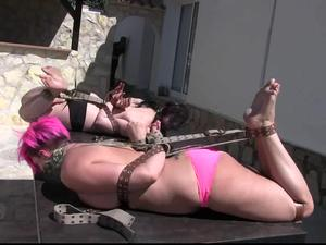Nongrid_medium_nova-pink-afsana-hogtied-in-the-sun-with-belts