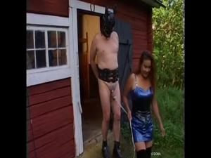 Nongrid_medium_pony-boy-training