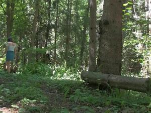 Nongrid_medium_trough-the-woods-2-2